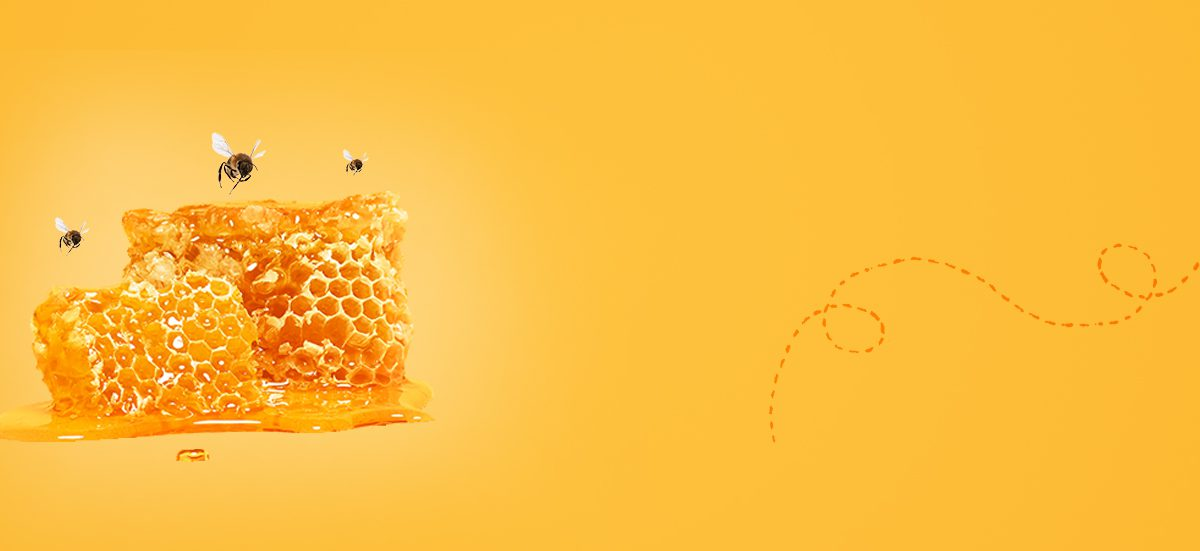 img-banner-2 - Buy Organic Raw Pure Honey Online | Best Raw